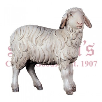 Kostner Standing Sheep
